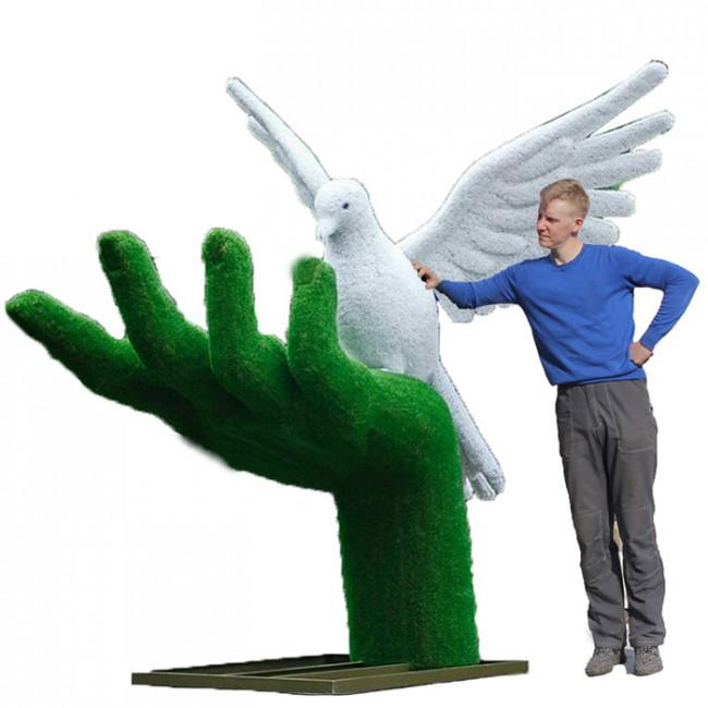 Голубь на руке