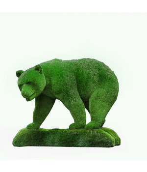 Медведь на острове