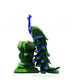 Павлин синий на вазоне